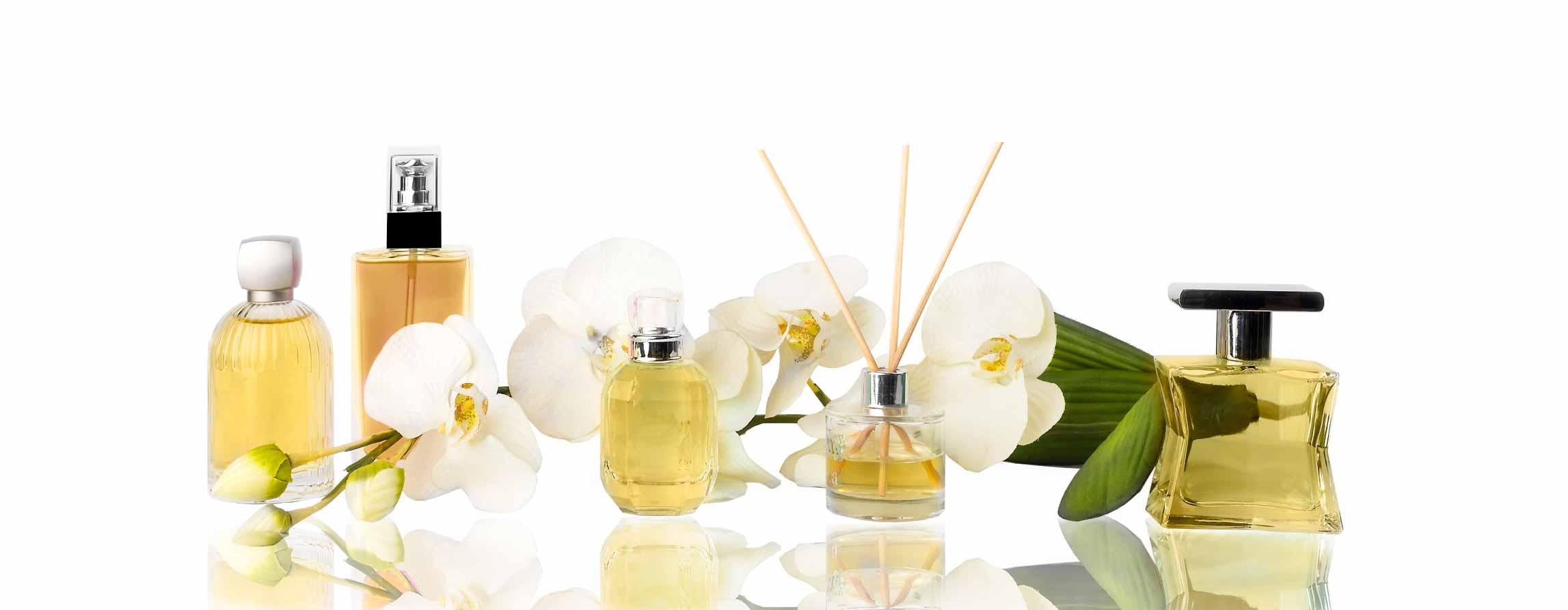 Perfumes-Banner